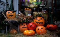 Vài triệu đồng một trái bí ngô khổng lồ chơi Halloween, vừa đăng bán đã cháy hàng