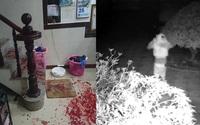 Kẻ cướp lẻn vào nhà khống chế 2 vợ chồng, nhốt vào nhà vệ sinh, hiện trường có nhiều vết máu