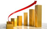 Sau tin SCIC phải hoàn tất thoái vốn trước ngày 20/12, cổ phiếu BVH, BMI và NTP đồng loạt tăng trần