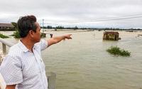 Quảng Trị: Hàng chục tấn tôm, cua, cá kình sắp bắt bán bị lũ cuốn trôi,  nông dân tiếc đứt ruột