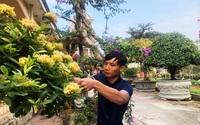 Vĩnh Phúc: Nông dân trồng vườn cây cảnh độc, lạ, có cây tiền tỷ, dân chơi cây từ Sài Gòn cũng lặn lội ra xem