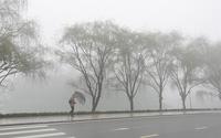 Hình ảnh Sa Pa đẹp nao lòng trong làn sương mờ, giá lạnh