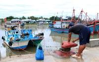 Ninh Thuận: Hàng nghìn thuyền đánh cá của ngư dân đang ở ngoài khơi vội vã vào bờ tránh áp thấp nhiệt đới