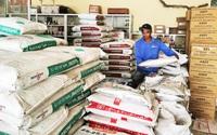 """Giá phân bón tăng chóng mặt, nông dân đau đầu nghĩ cách ứng phó (bài 1): Lo cho """"vụ lúa ăn chắc"""""""
