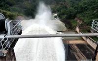 Bình Thuận: Mưa lớn gặp lúc hồ xả lũ, lúa má, cá tôm ngập chìm trong mênh mông nước
