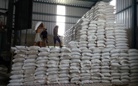 Bác tin 30.000 tấn gạo xuất Trung Quốc bị mốc, hỏng