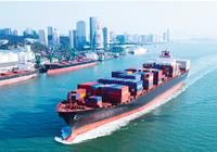 Cục Hàng hải lúng túng trong việc xử lý sự cố tràn dầu