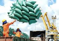 Xuất khẩu - động lực tăng trưởng cuối năm