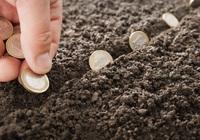5 trường hợp được miễn tiền sử dụng đất năm 2020