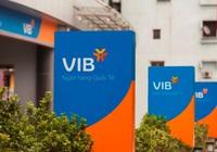 Cổ phiếu Ngân hàng VIB sẽ giao dịch trên HoSE từ ngày 10/11