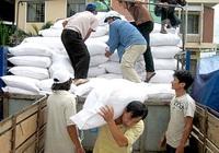 Cấp thêm 6.500 tấn gạo cho 4 tỉnh miền Trung bị mưa lũ