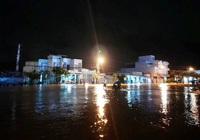 Bình Định phân bổ 1.000 tấn gạo cứu đói người dân vùng thiên tai, mưa lũ