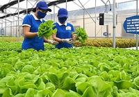 Phí thẩm định kinh doanh lĩnh vực nông nghiệp cao nhất là 18 triệu đồng/lần