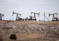 OPEC+ nhất trí tăng sản lượng dầu sau thời gian dài cắt giảm: lối đi hẹp gỡ thế bế tắc
