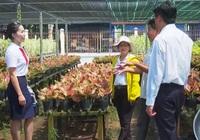 Agribank góp phần tạo sức bật mới cho làng hoa Sa Đéc