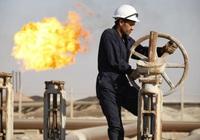 Mexico từ chối thỏa thuận cắt giảm sản lượng 10 triệu thùng của OPEC+, giá dầu lao dốc