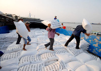 Để xuất khẩu 80.000 tấn gạo/năm sang EU, doanh nghiệp cần chủ động