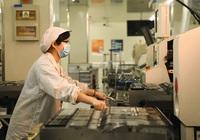 Bloomberg: Kinh tế Trung Quốc thấy triển vọng phục hồi