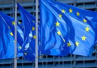 Thâm hụt ngân sách do dịch Covid-19, Châu Âu sẽ tìm cách đánh thuế đại gia công nghệ Mỹ?
