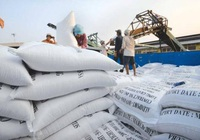 """Xuất khẩu gạo tăng mạnh, có thể """"soán ngôi vương"""" của Thái Lan"""