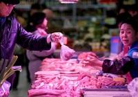 Giá thịt lợn Trung Quốc tăng gần 5% trong 10 ngày