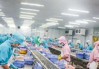 Nông nghiệp Việt Nam phấn đấu vào tốp 15 nước phát triển nhất thế giới vào 2030