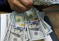 Tỷ giá ngoại tệ hôm nay 6/6, đồng USD đảo chiều tăng giá trở lại