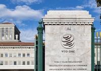 WTO chốt danh sách ứng cử viên cho vị trí Tổng Giám đốc