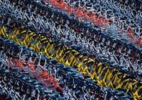 Giữa dịch Covid-19, người Mỹ ồ ạt mua xe đạp Trung Quốc ... tập thể dục