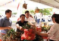 Nhà vườn Lạng Sơn và 7 tỉnh thành giao dịch trực tuyến với 70 DN nhập khẩu nhãn
