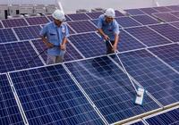 Tất cả trạm biến áp đầy tải, điện mặt trời Ninh Thuận dừng đấu nối vào lưới điện
