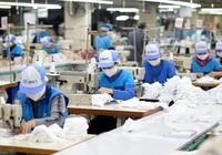Hàng dệt may xuất khẩu Việt Nam có thể bị EAEU áp dụng biện pháp phòng vệ