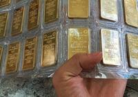 Giá vàng hôm nay 21/9 quẩn quanh mức 56 triệu đồng/lượng