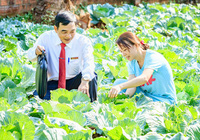 """""""Bệ phóng"""" giúp nông dân Bình Định làm giàu"""