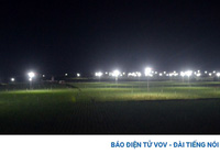 """Nông dân Lý Sơn làm """"bẫy đèn"""" trừ sâu để tăng giá trị nông sản"""