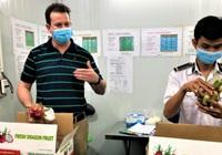 Trái cây tươi Việt Nam xuất khẩu bình thường trở lại thị trường Hoa Kỳ