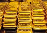 Giá vàng hôm nay 19/1: Vàng SJC tăng, chênh lệch giá thế giới hơn 4 triệu đồng/lượng