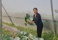 Người phụ nữ làm giàu từ nông nghiệp công nghệ cao