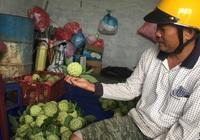 Nông dân Khánh Hòa mạnh dạn đầu tư vốn để chuyển đổi cây trồng