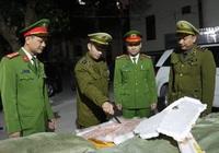 Bắt hơn 2 tấn nầm lợn bốc mùi suýt tuồn ra thị trường