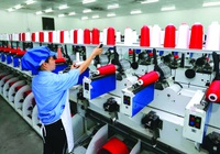 Phạt 5 công ty xuất khẩu lao động