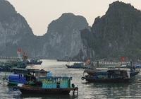 Cấm neo đậu phương tiện thủy tại khu vực vùng đệm ven bờ Vịnh Hạ Long