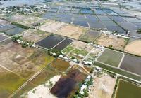 Thanh tra phân lô bán nền tại Khánh Hòa, Lâm Đồng, Ninh Thuận