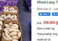 Khuyến mãi sâu, khoai lang tím Úc vẫn có giá 100.000 đồng/kg