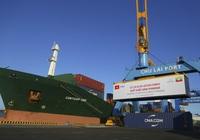 Vì sao hàng container thông qua Cảng biển Việt Nam tăng cao?