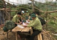 Dự án Rừng và Đồng bằng Việt Nam do USAID tài trợ trên 31 triệu USD