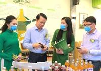 VGreen ra mắt sản phẩm Trà lên men VKombucha - thương hiệu Thái Nguyên