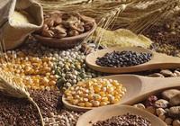 FAO: Giá lương thực toàn cầu tăng tháng thứ 10 liên tiếp