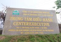 CLIP: Đại dự án nuôi bò nghìn tỷ ở Hà Tĩnh xin điều chỉnh giảm quy mô để tái cơ cấu