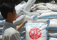 """8 tháng 2021, Việt Nam chi hơn 500 triệu USD mua đường, ngành mía đường tiếp tục """"khủng hoảng"""""""